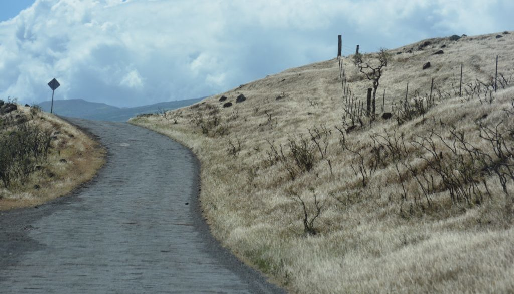 road-2172622_1920